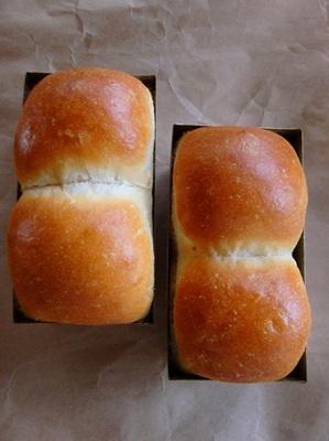 7-ミニ食パン(サフ) (1).jpg