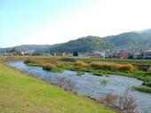 川-紅葉3.jpg